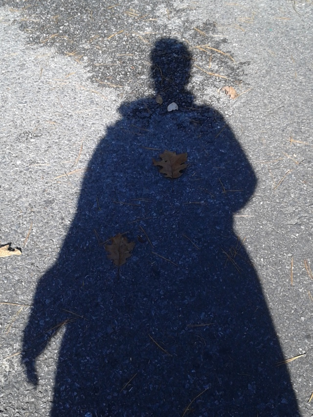 survivor's shadow